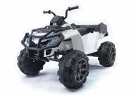Детский кадроцикл Grizzly BDM0909